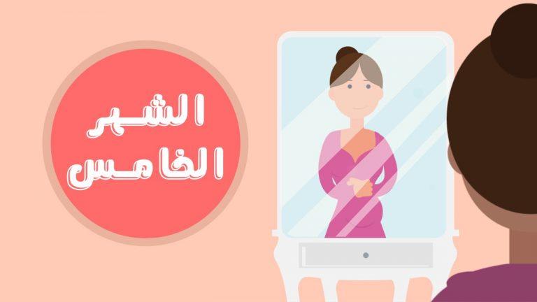 الأكلات المفيدة للحامل في الشهر الخامس