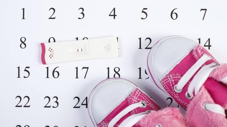 ايام التبويض بعد الدورة بكم يوم و3 مراحل لحدوث حمل