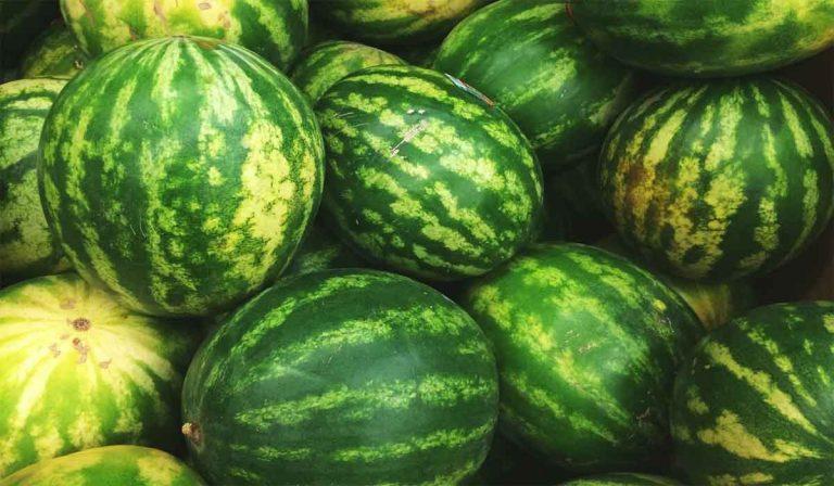 أفضل 9 فوائد البطيخ للحامل