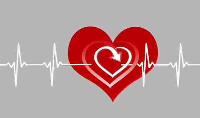 معدل ضربات القلب الطبيعي للنساء